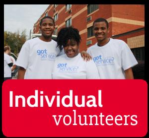 Individual Volunteers